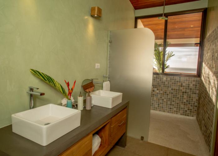 Jungle suite6