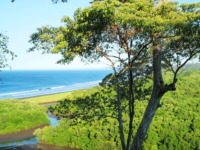 Lagarta Lodge - Costa Rica